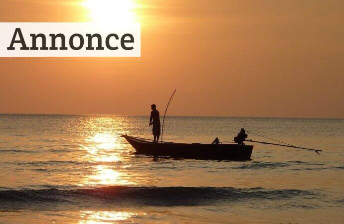 Hvilken fiskestang skal du vælge?
